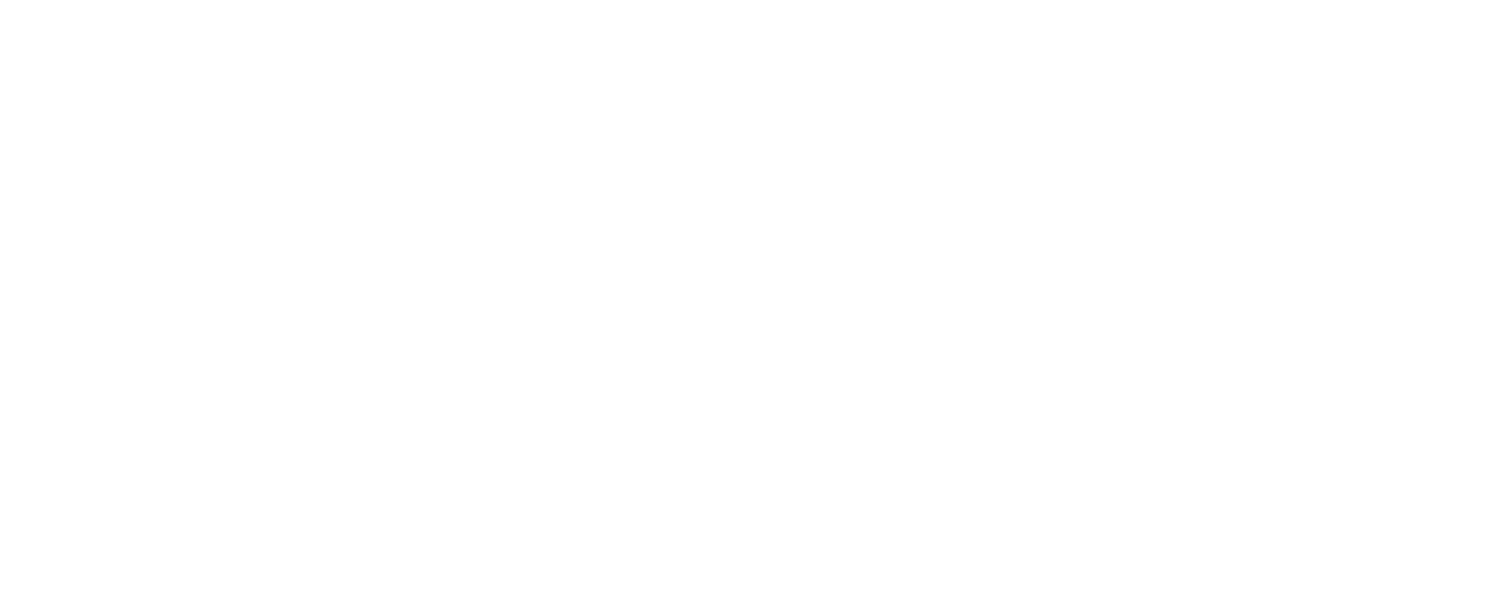 BTS Systems Group Hungary
